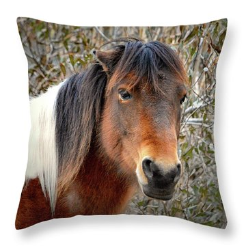 Assateague Island Pony Patricia Irene Throw Pillow