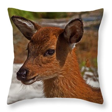 Assateague Island Sika Deer Fawn Throw Pillow