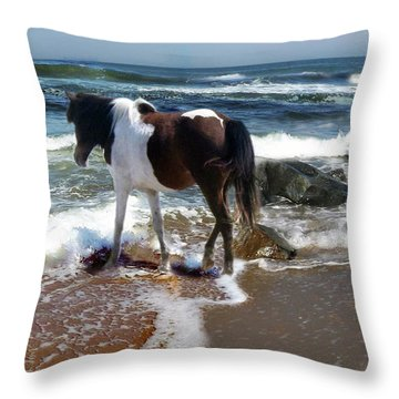Assateague Pony Throw Pillow