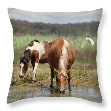 Assateague Pony Pair Throw Pillow