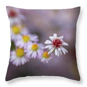 Aster  Throw Pillow
