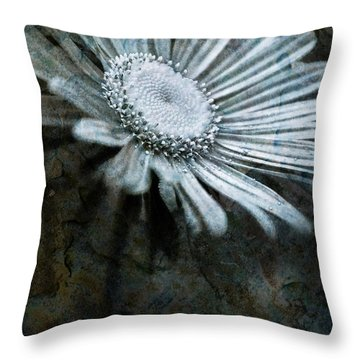 Aster On Rock Throw Pillow