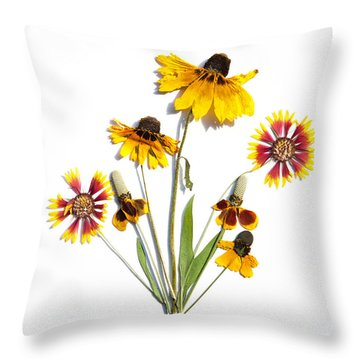 Asteraceae Throw Pillow
