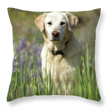 Throw Pillow featuring the photograph At Attention by Jim and Emily Bush