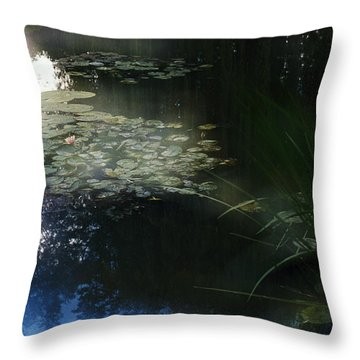 Throw Pillow featuring the photograph At Claude Monet's Water Garden 3 by Dubi Roman