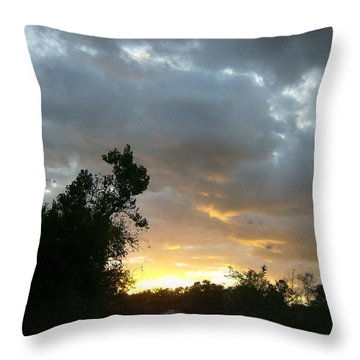 Throw Pillow featuring the photograph At Daybreak by Skyler Tipton