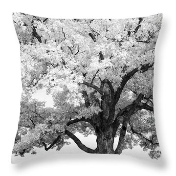 At Devils Den Throw Pillow by Paul W Faust -  Impressions of Light