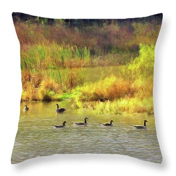 At Home In Monee Throw Pillow