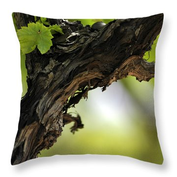 Throw Pillow featuring the photograph At Lachish Vineyard by Dubi Roman
