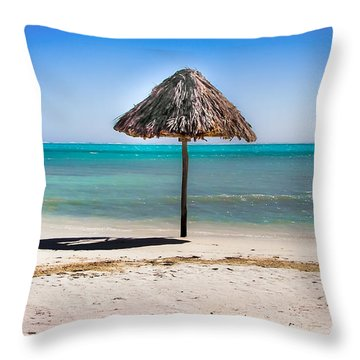 At Last Throw Pillow by Karen Wiles
