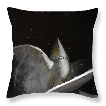 At Night In The Winter Throw Pillow