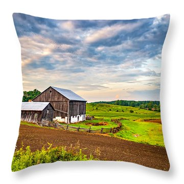 At One With The Land Throw Pillow by Steve Harrington