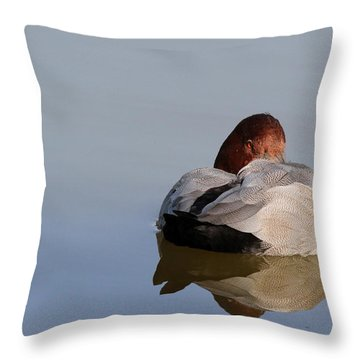 Throw Pillow featuring the photograph At Rest by Richard Patmore