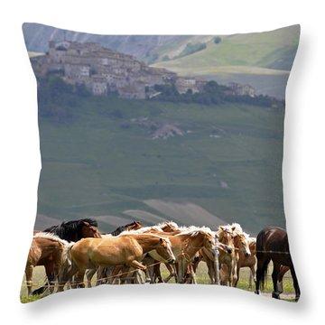 Castelluccio Di Norcia, Parko Nazionale Dei Monti Sibillini, Italy Throw Pillow