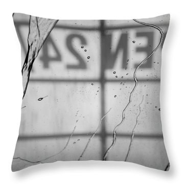 Throw Pillow featuring the photograph At The Car Wash by Colleen Coccia