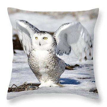 At The Dawn I Am Waking Throw Pillow