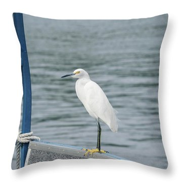 Throw Pillow featuring the photograph At The Edge by Kim Hojnacki