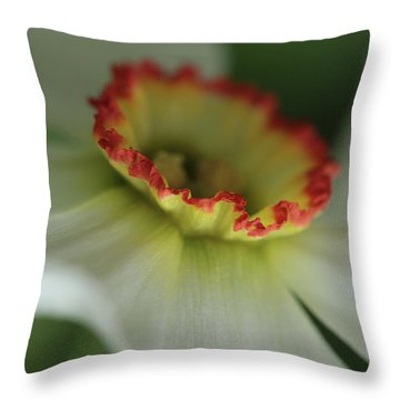 At The Edge Of The Crater Throw Pillow