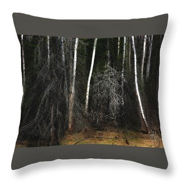 Throw Pillow featuring the photograph At The Edge Of The Forest  by Jim Vance