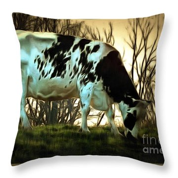 At The End Of The Day - Black And White Cow Throw Pillow