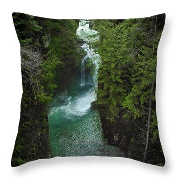 Wonderful Waterfall Throw Pillow