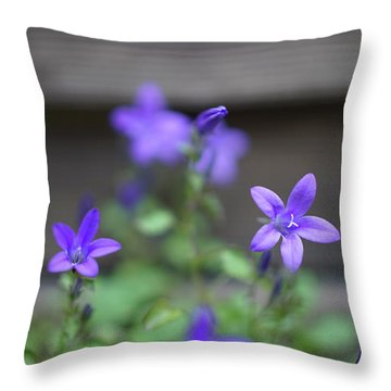 At The Fence Throw Pillow