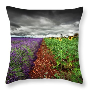 At The Middle Throw Pillow