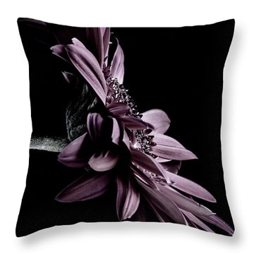 At The Moonlight Throw Pillow by Edgar Laureano