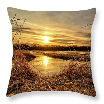 At The Rivers Edge Throw Pillow