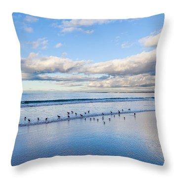 At The Water's Edge Throw Pillow by Derek Dean