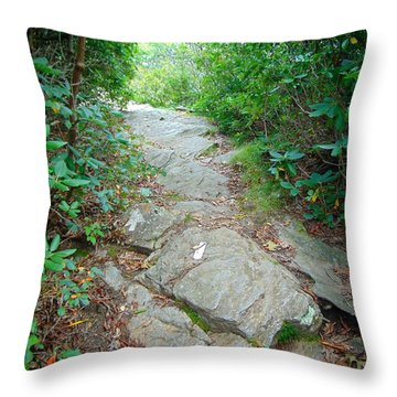 At-trail Blazes Throw Pillow