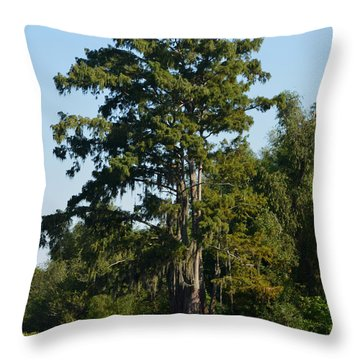 Atchafalaya Basin 11 Throw Pillow