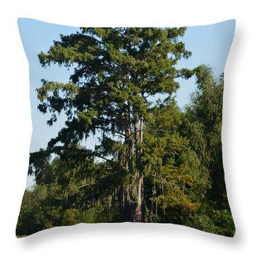 Atchafalaya Basin 11 Throw Pillow by Maggy Marsh