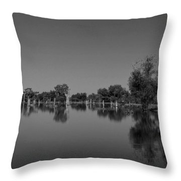 Atchafalaya Basin 15 Throw Pillow