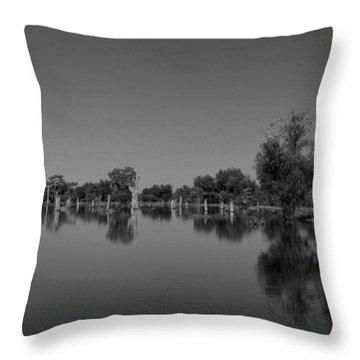 Atchafalaya Basin 15 Throw Pillow