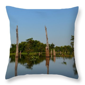 Atchafalaya Basin 18 Throw Pillow by Maggy Marsh