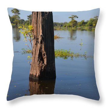 Atchafalaya Basin 22 Throw Pillow