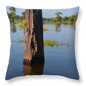 Atchafalaya Basin 22 Throw Pillow by Maggy Marsh