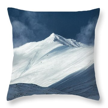 Atigun Pass In Brooks Range Throw Pillow
