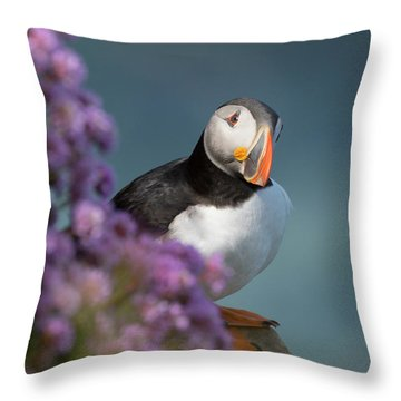 Throw Pillow featuring the photograph Atlantic Puffin - Scottish Highlands by Karen Van Der Zijden