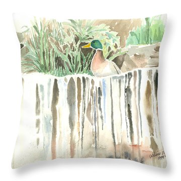 Atop The Waterfall Throw Pillow by Arline Wagner