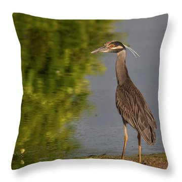 Throw Pillow featuring the photograph Attentive Heron by Jean Noren