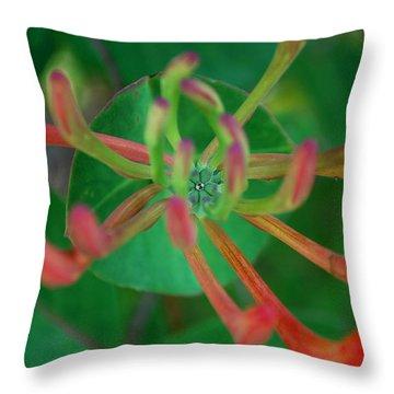 #atthestillcenter Throw Pillow by Becky Furgason