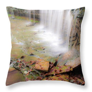 Au Train Falls Throw Pillow