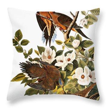 Audubon: Dove Throw Pillow by Granger