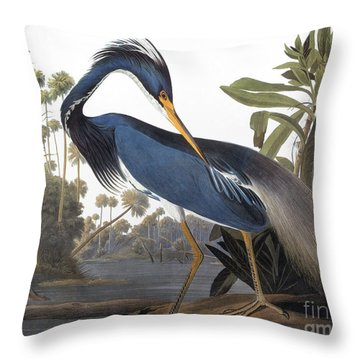 Audubon Heron, 1827 Throw Pillow