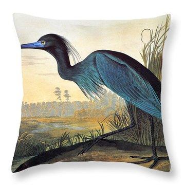 Audubon: Little Blue Heron Throw Pillow
