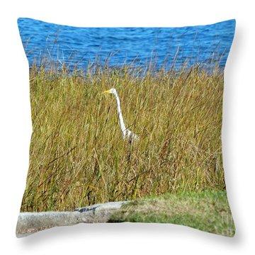 Audubon Park Sighting Throw Pillow