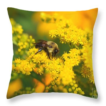 August Bee Throw Pillow by Susan  Dimitrakopoulos