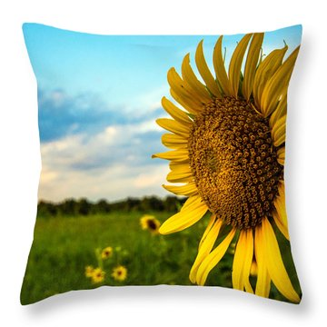 August Icon  Throw Pillow